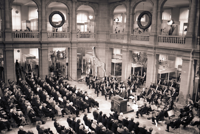 Black-and-white photography, view of the large columned hall of the Museum Koenig, solemnly dressed audience on the left, an orchestra on the right.