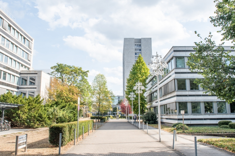Access path to the Bonner Tulpenfeld from the direction of the Heussallee with a view of the typical atrium buildings and the 18-storey high rise, bushes and trees on both sides, an eye-catching street light on the right.