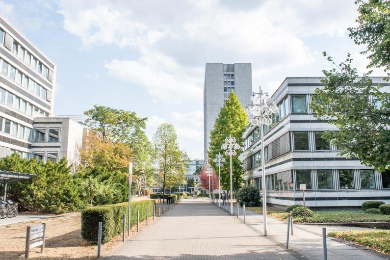 Zugangsweg zum Bonner Tulpenfeld aus Richtung der Heussallee mit Blick auf die typischen Atriumbauten und das 18-stöckige Hochhaus, zu beiden Seiten Büsche und Bäume, rechts eine auffällige Straßenlaterne.